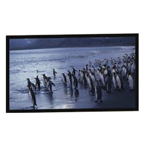 "AccuScreens Fixed Frame Projection Screen - 55"" x 72"" - Matte White - 84"" Diagonal"