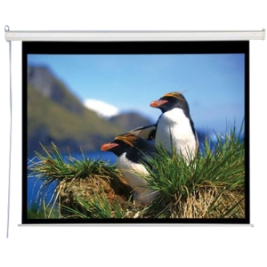 "Draper AccuScreens Projection Screen - 59"" x 105"" - Matte White - 119"" Diagonal"