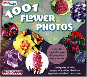 1001 Flower Photos
