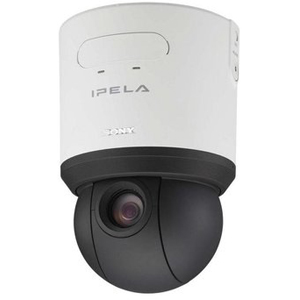 Sony SNC RS46N Indoor Dome Network Camera   Color   CCD