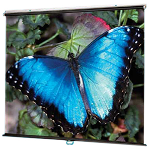 "Draper V Screen Manual Wall and Ceiling Projection Screen - 60"" x 60"" - Fiberglass Matt White - 85"" Diagonal"