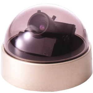 EverFocus ED300 Surveillance/Network Camera - Color - 3.2x Optical - CCD - Cable