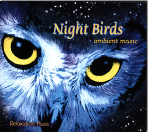 Night Birds Ambient Music