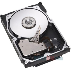 "IBM-IMSourcing 146 GB 2.5"" Internal Hard Drive - 1 Pack - Box - SAS - 10000 rpm - 16 MB Buffer - Hot Swappable"
