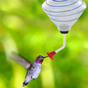 Hand Blown Glass Hummingbird Feeder