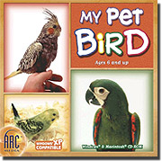 My Pet Bird