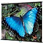 "Draper V Screen Manual Projection Screen - 70"" x 70"" - Matte White - 99"" Diagonal"