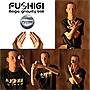 Fushigi+Magic+Gravity+Ball+-+As+Seen+on+TV