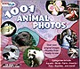 1001 Animal Photos