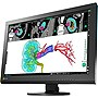 "Eizo RadiForce MX242W 24.1"" LED LCD Monitor - 16:10 - 12 ms - 1920 x 1200 - 1.07 Billion Colors - 350 Nit - 1,000:1 - WUXGA - DVI - DisplayPort - USB - 68 W - Black - RoHS, China RoHS, WEEE, TÜV"