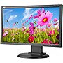 "NEC Display 20"" Eco-Friendly Widescreen Desktop LED-Backlit LCD Monitor"