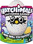 Hatchimals Glittering Garden - Hatching Egg and Interactive Shimmering Draggle
