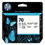 HP 70 Photo Black and Light Gray Printhead - Inkjet - 1 Each