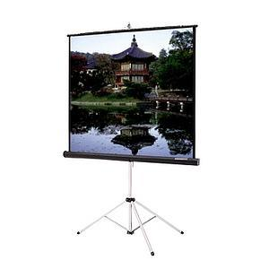 "Da-Lite Picture King Portable and Tripod Projection Screen (Gray carpeted) - 96"" x 96"" - Matte White - 136"" Diagonal"